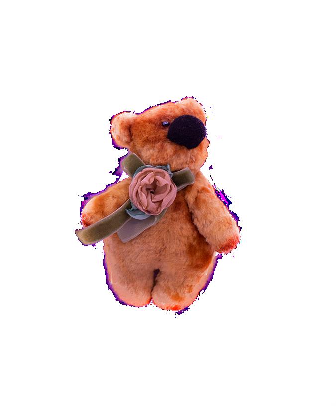 Ursuleț de pluș